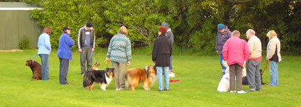Intermediate Obedience Class, Summer 2007